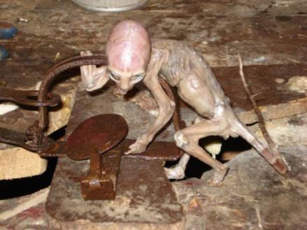Alien-Found-in-Mexico